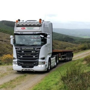 bell international haulage